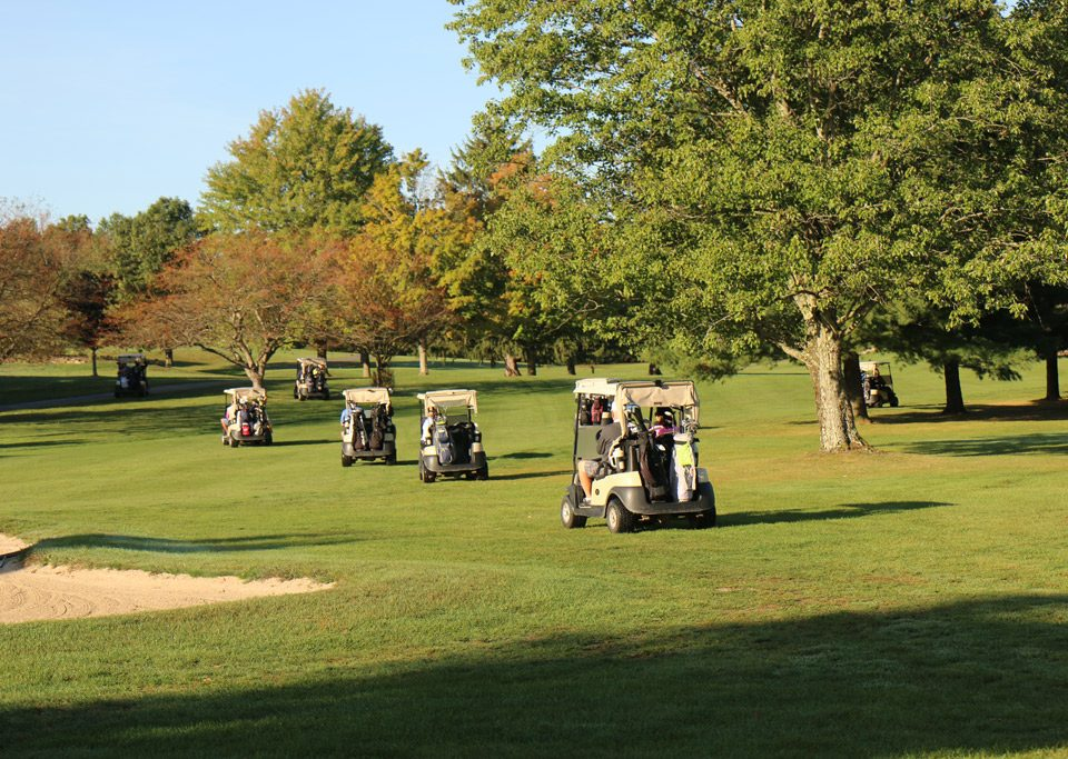 Golf carts starting their scramble.